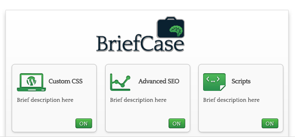 BriefCase now available!