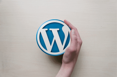 What Should You Look for in a WordPress Theme?