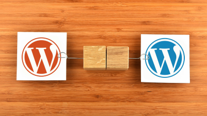 Why You Should Use A WordPress Theme For Your Ecommerce Business